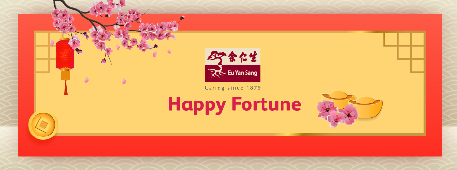 Bring a smile with the prefect CNY gift Go Shop  - Happy Fortune 940x
